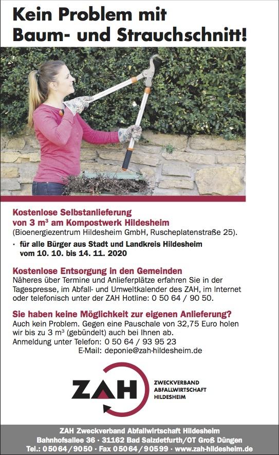 Baum_Strauch_Herbst_neu